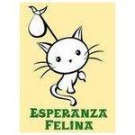 April 25, 2015 at 04:01PM FIRMA Y RT!!! AYTO. VITORIA NO ABANDONE A LOS RESCATADOS!!!! #FREEYUYEE #FREEYUYEE_ES… http://t.co/i6qgnsanHB