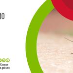 Día Mundial del Paludismo. Es momento de potenciar el compromiso para luchar contra el paludismo. http://t.co/bBMXYKhYRE