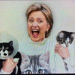 My new avatar for EVERYTHING #WHCD http://t.co/LDGx8epItv