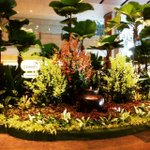 #Singapore #Changi Instagram by @kirknee - #Singapore #Changi #international #Airport http://t.co/dX7spkWjSU