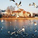 Весна в Минске http://t.co/RfESgAJhaD