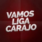 #EnciendeCasaBlanca Vamos LIGA Carajo http://t.co/pn1Ekqxffl
