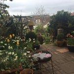 Im on the gate at the @GardenHouseBtn @NGSOpenGardens open garden, Warleigh Road #Brighton http://t.co/AWvVdPDhgm