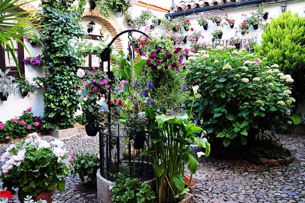 Mis patios cordobeses http://t.co/SDoaOCcLJx