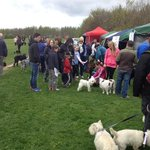 Bark For Life Charity Walk A Great Success http://t.co/VWzMX0w76L #WestBridgford #Nottingham http://t.co/xYLeYOauFT