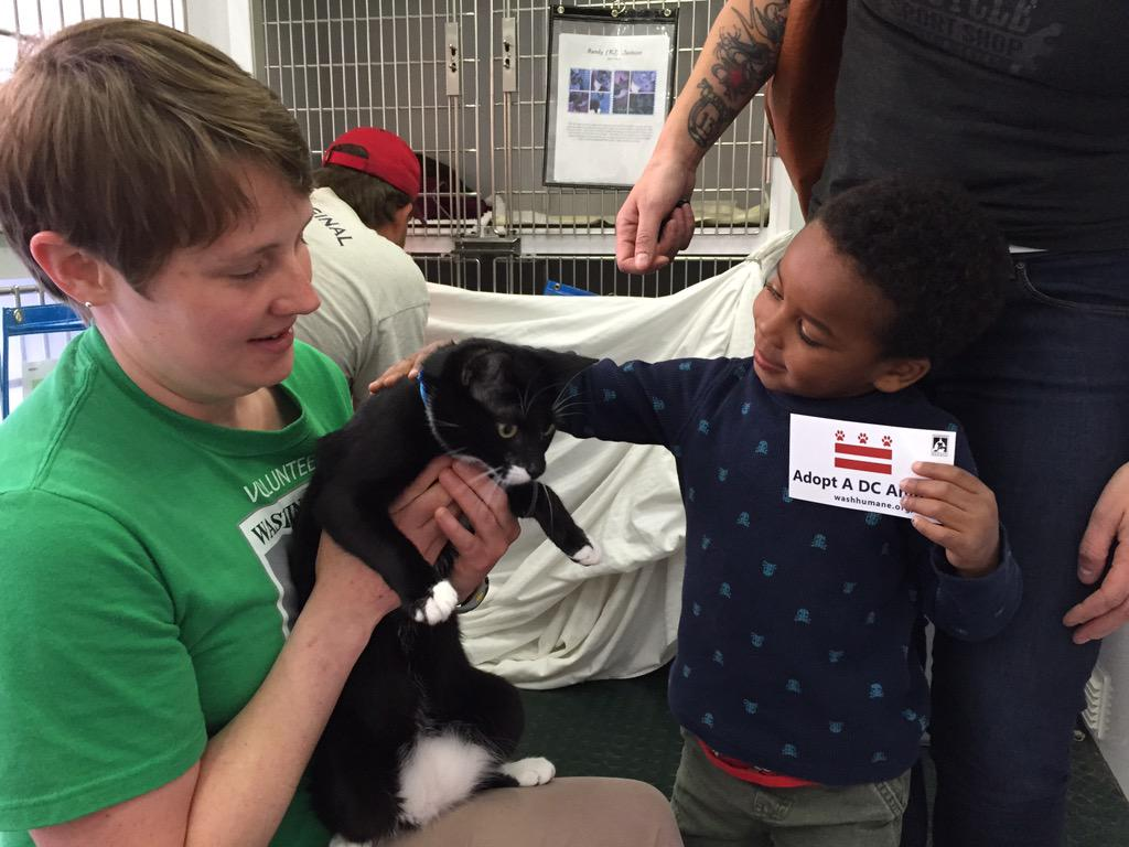 Ezra meeting Squeaky, one of the sweetpeas needing a home. Thank you, @Wash_Humane ! #adoptdontshop #dcanimalrescue http://t.co/N4NwFTlswQ