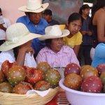 Productores de pitaya por la conquista del D.F. http://t.co/vuM0ow7vgC #CDMX #Oaxaca #Comida http://t.co/8jZLLFy7Mj