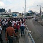 Una marea blanca rumbo al estadio de @BarcelonaBSC. La hinchada de @LDU_Oficial presente en Guayaquil. http://t.co/wdtsHk1S8B