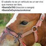 trabajar en carro no es delito, siempre que la fuerza no la haga un caballo..#BastaDeTas http://t.co/mRwOUw61bY