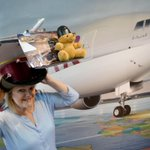 The love of travelling with #QatarAirways shows no boundaries - even for the yellow bear. http://t.co/EhOFwO2PuJ