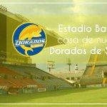 ¡Felicidades @Dorados! Confiamos en que saldrán campeones y regresarán a primera división. http://t.co/Dc4LuvxoAc
