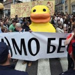 Protesters in Belgrade adopt duck symbol to oppose waterside development http://t.co/GssmongAmW #NewsfromElsewhere http://t.co/z7p4rlB270
