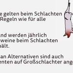 Bio hört beim Schlachten auf: http://t.co/YTlCBAwTq3 via @Bojerlanski http://t.co/QEl37KdWPm