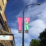 Our fabulously colourful #fortstreet banners are back up for the season! thanks @CityOfVictoria ! #fabulousfort #yyj http://t.co/zmP5ZQwnXa