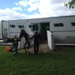 #UAE Derby winner #Mubtaahij has arrived at @ChurchillDowns for #KyDerby @DerbyContenders @ABRLive http://t.co/YiXg4f4IJE