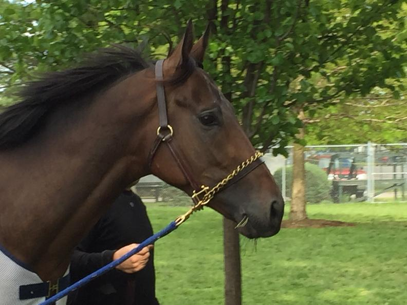 Mubtaahij is here! #KyDerby http://t.co/q1OIaPV4yi