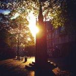 Morgen #Aachen! Kulturtipp für heute, 19.30 Uhr in der Buchhandlung Schmetz am Dom - was @MartinSchulz gerne liest :) http://t.co/cPLbxFYRWM