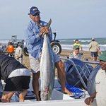 Andre Joubert with a 28.1kg couta at the Imperial Nissan Zululand Couta Classic - Photo by Caroll Hermann http://t.co/MTM6E8glzm