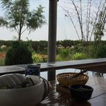 Summer mornings. Chilling in the farm..... Blisss http://t.co/ryhokcwplX