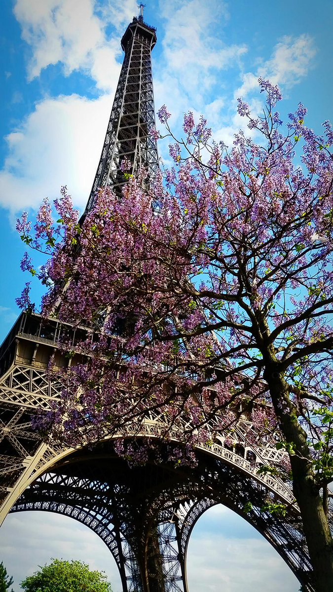 Paris in spring... a sight to behold. Sending smiles and best wishes for a very happy Wednesday. #Paris http://t.co/aYqiYzOB8e