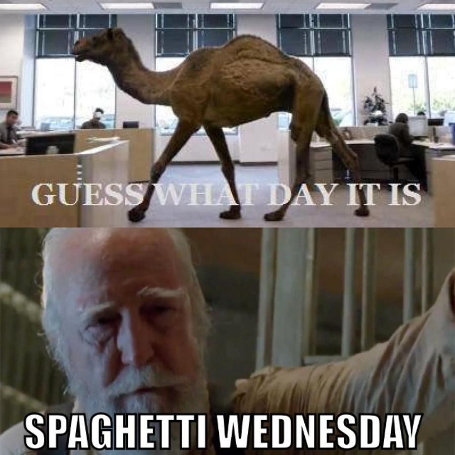 This #WalkerWednesday, make it a #SpaghettiWednesday #TWDFamily http://t.co/FwBdvmQjy6