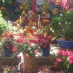#CruzBajoAlbayzín #DiadelaCruz15 #CrucesDeMayo #Granada http://t.co/2k2vCHvI9J