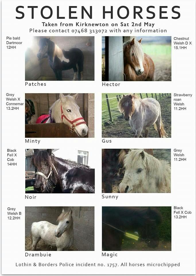8 horses stolen from Kirknewton earlier today. Hoping they are all found safe very soon. #Edinburgh http://t.co/YHGNfrIJe7