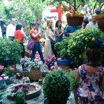 ¡Buenos días! Muy contentos por el primer premio #CruzBajoAlbayzin #patio #DiadelaCruz15 #Granada ¡gracias! http://t.co/MNMcjRvsVK