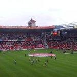 Molinon Time! Vamos Sporting. http://t.co/qrNuPaxz51