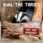 """""""A vote for the Tories is a death sentence for British wildlife. Save our wildlife, cull the Tories! #badgermonday http://t.co/07HnONMpbe"""