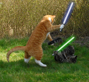 @JeriLRyan @morgfair @mckenziewestmor May the 4th Be With You! lol http://t.co/a3wbFYE0CI