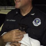 How kind! #FHP Sgt. Robert Leatherow takes home kitten reportedly thrown from vehicle in #Volusiacounty. Kitten ok http://t.co/R3PWL66zCl