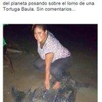 Muchas reacciones genera imagen de mujer posando sobre Tortuga Baula. @GabyEtchelecu fue una de las que reaccionó http://t.co/bDH7WYK6dw