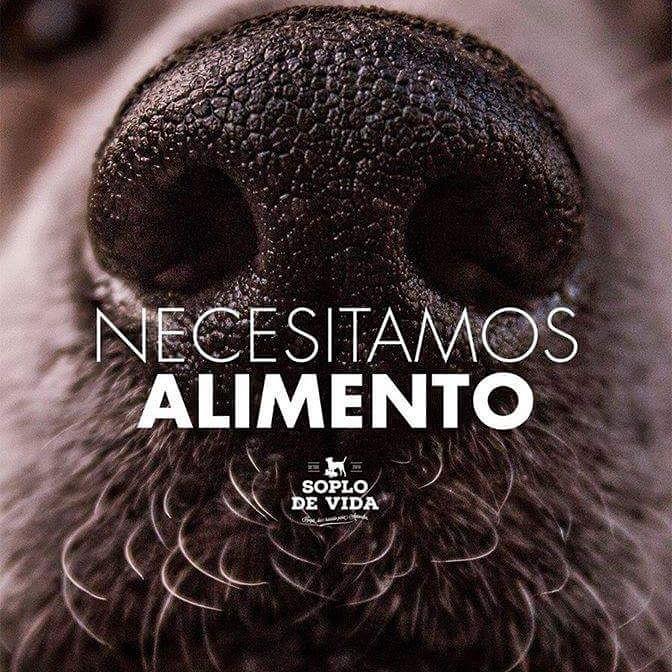 Se viene el frío y necesitamos de tu ayuda.  @MarcelaFeudale @candetinelli @GuilleLobo @MaguiAicega http://t.co/ilsMcCj2p2