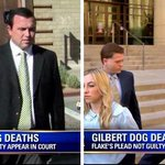 Grand jury re-indicts owners of Gilbert Dog Boarding House where 20+ dogs suffocated to death #Gilbert23 http://t.co/wRpIMT3vbw