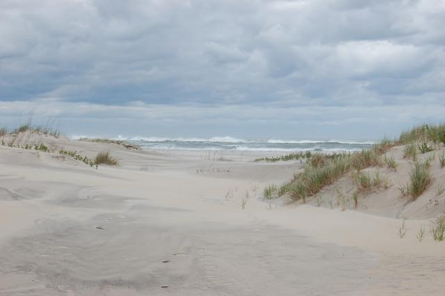 waves/ of sleep/ so distant/ yet these grits of sand/ in my eyes   #tanka #micropoetry #poetry   http://t.co/0WKIva8RhF @dsjinspring