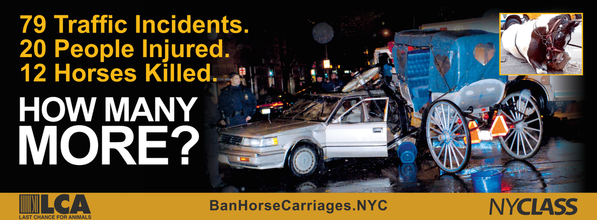 . @MTA doesn't want you to see this ad. Don't let them silence us - RT it now  #BanHorseCarriages http://t.co/BRPdEAt9KS