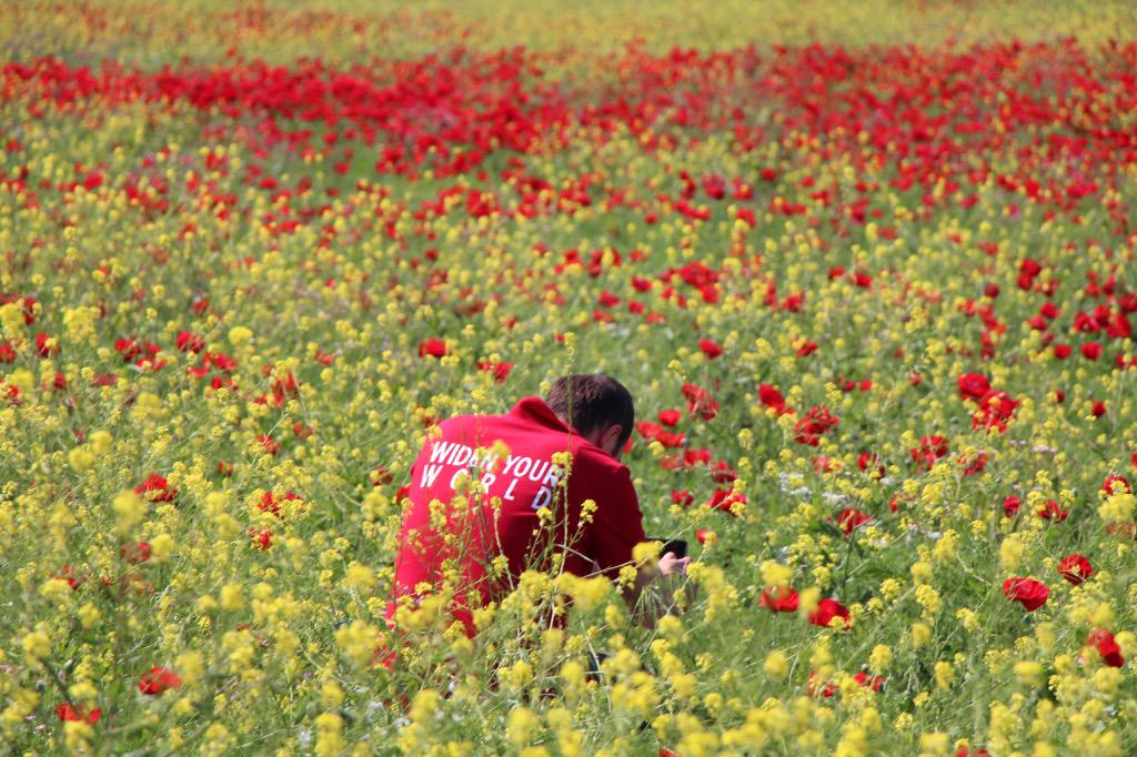 Surprise highlight of our trip to Urfa: a spontaneous stop in a field of poppies. #LoveFromTurkey #WidenYourWorld http://t.co/CNZulSEo9y