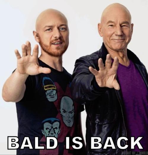 "via @M101_Mutant101 Patrick Stewart & James McAvoy ""Bald is Back"" http://t.co/HnzxnfkVv7 http://t.co/MUOivuVq6D"
