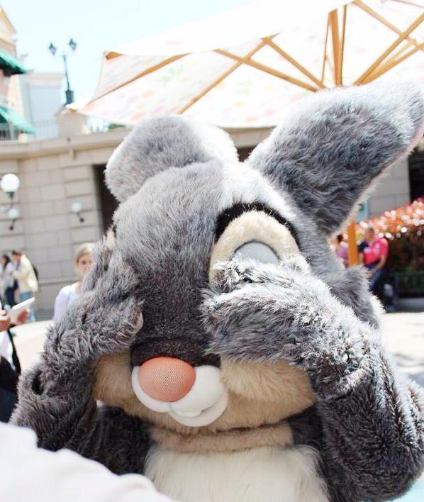 DisneylandParis, panpan, thumper