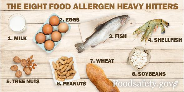 It's #FoodAllergyMonth.Know the 8 Heavy Hitter Food Allergens? Our #foodsafety gurus do: http://t.co/1N2VePz6yU http://t.co/Yw1mpe9PIT