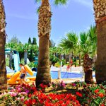 Find us on Facebook at WaterWorld Waterpark! Also dont forget to follow us on Instagram @waterparkcyprus 📷 http://t.co/Ki38E5RB2b
