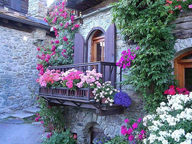 "素敵なお花のあるフォト☆彡  ""@gede_prama: From the window of love, u see only beauty http://t.co/5rOnhaHIPj http://t.co/JUN8TLp1zX"""