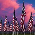 Home of the free because of the Brave. We thank you. My respect goes to the brave men/women & their families. ❤️???????? http://t.co/aBfha14YFp