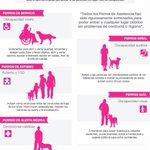 En la #CDMX alrededor de 500 mil personas podrían necesitar apoyo de perros de asistencia. #CDMXincluyente http://t.co/9z7gP15ewo