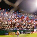 CLUB CERRO PORTEÑO CAMPEÓN! Por tus colores me desespero! #LaMejorHinchadaDelPais #Cerro (ph: Robert Zayas) http://t.co/DHdQJjJ1sL
