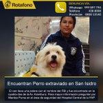AYUDA. ¿Lo reconoces? Este perrito se extravió en #SanIsidro y busca a sus dueños. Fue encontrado en la Av. Aramburú. http://t.co/4xN7Mb1wUN