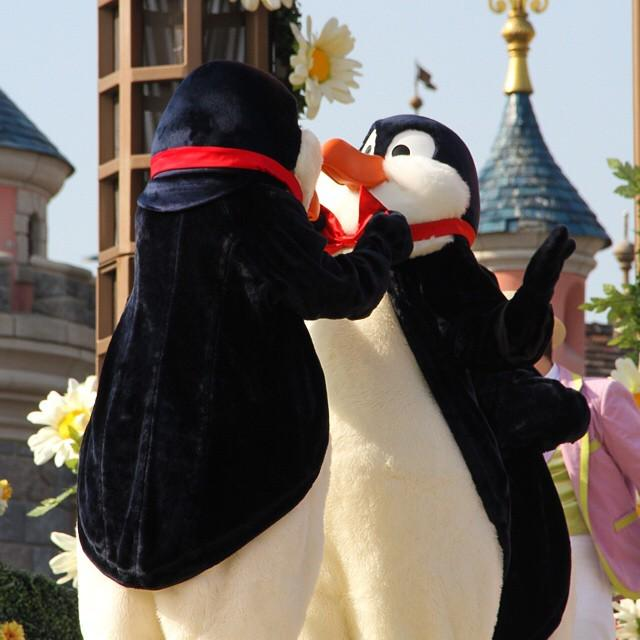 DisneylandParis, penguin, disneylandparis, spring, disneyspring, springseason, welcometospring, swingintos