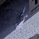 [JTBC 뉴스룸] 용산구 아파트에 무차별 쇠구슬 테러. 접수된 피해자는 8가구로 직경 7mm 쇠구슬이 갑자기 날아든 것으로 확인. 경찰 CCTV 수거해 용의자 추적중. http://t.co/A3VGAZMOef http://t.co/7qd2nyccvx