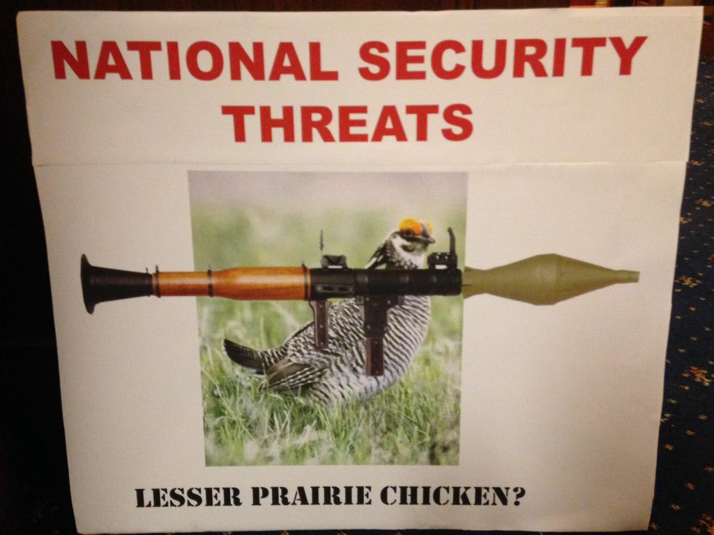 @RepSpeier there is no greater threat than the lesser Prairie Chicken #FY16NDAA http://t.co/LFYbiEk75r